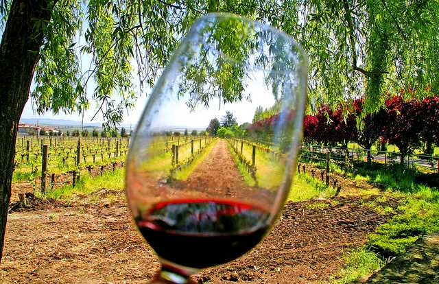 wine competition central california